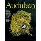 Audubon Magazine Discount