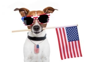 Best Fourth of July Coupon Codes and Promos
