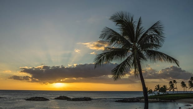 Fly First Class to Hawaii for $285! (or How the European Banking Crisis Will Pay For Your Vacation!)