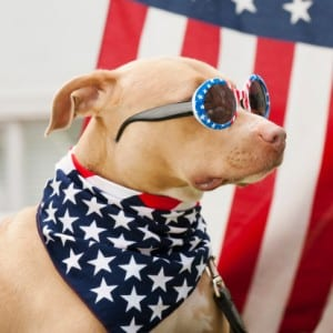 4th of July Pit