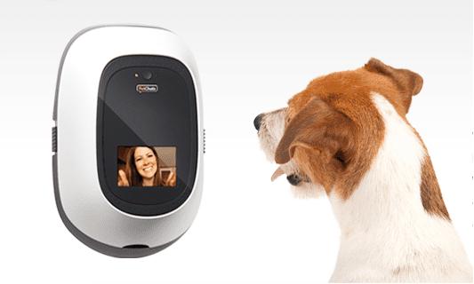 Un-gran-Gadget-para-los-que-extrañan-a-su-mascota