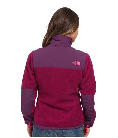 North Face Denali Fleece Jacket back view