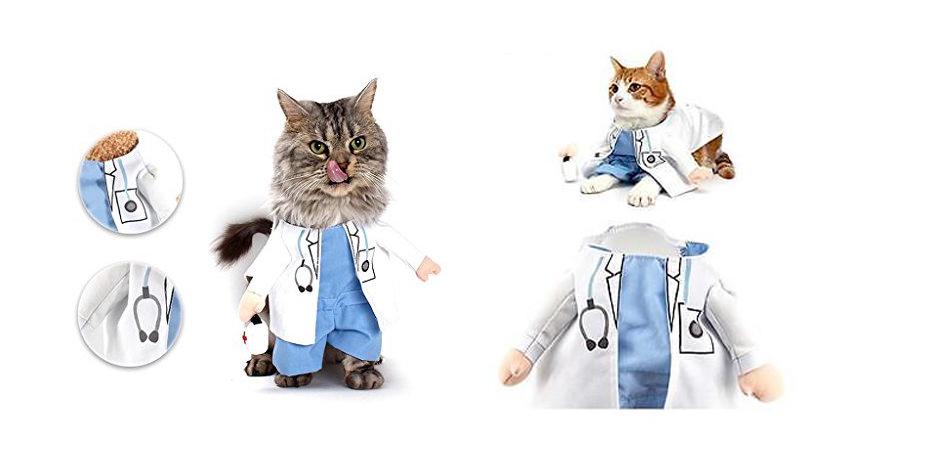 doctorcats