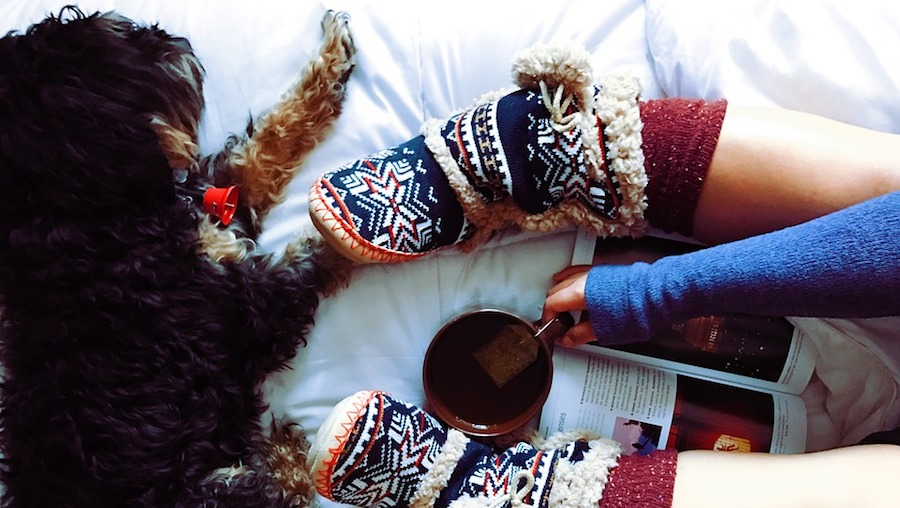 8 Things You'll Need to Hibernate Your Way Though Winter