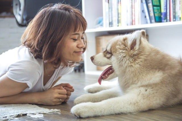 girl-and-dog-gift-guide