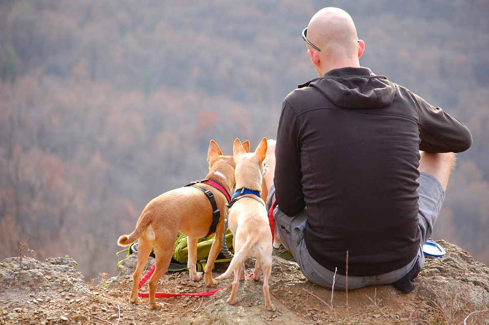 man-dogs-hiking-pet-gift-guide