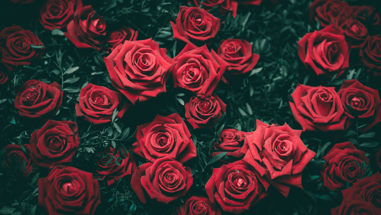 The Best Time to Order Valentine's Day Flowers: As Soon As Possible