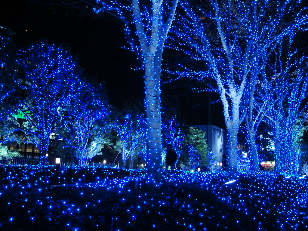blue-christmas-tree-lights