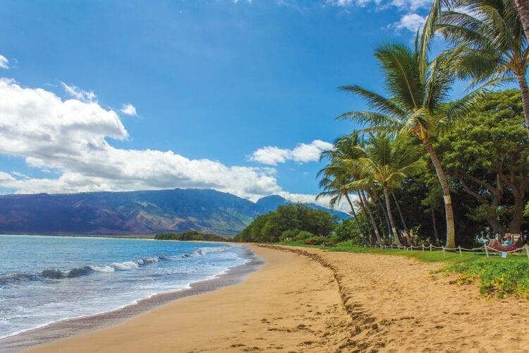 beach-1630540_960_720
