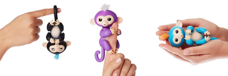 cheap-fingerlings-baby-monkeys