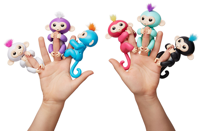 where-to-find-fingerlings-baby-monkeys