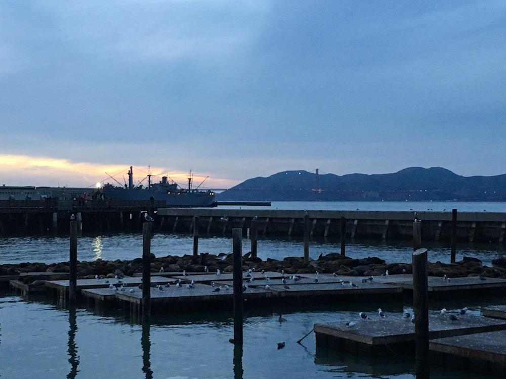 Pier-39-San-Francisco