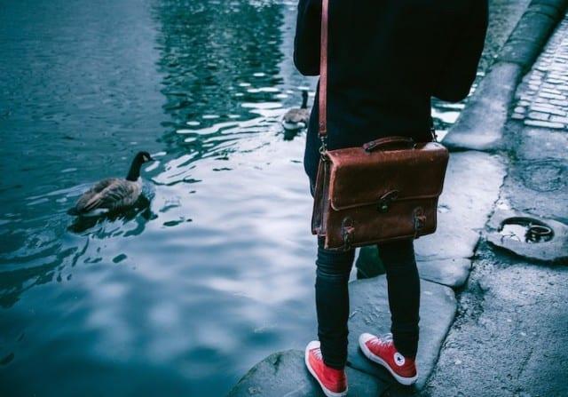 person feeding a duck