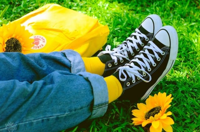 Converse in a field of daisies