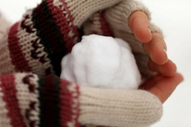 how-to-use-the-snowball-method