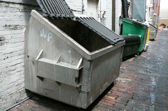 dumpster in an alley